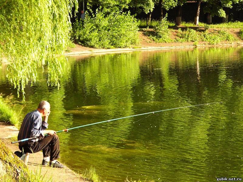 Где лучше ловить карася: тонкости и секреты карасиной рыбалки в разных условиях