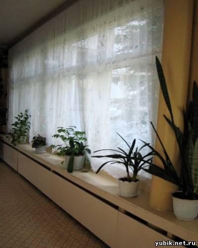 Лор отделение в краевой клинической больнице ставрополь